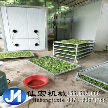 新型双开门瓜果蔬菜烘干房热风循环干果茶叶干燥箱