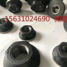上海徐汇标准锚固板六角锚固板六方锚固板厂家直销图片