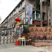 廣州市黃埔區龍頭山壽星院真醫養結合養老院院內有社區醫院圖片