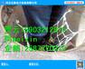 井盖防护网安装方法市政井防坠网厂家≈市政井防护网×年终大促销