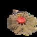 環衛設備圓盤掃路機,陜西省風火輪掃地機價格實惠
