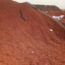 河北智睿供应红色火山石黑色火山石火山岩颗粒水处理火山岩图片