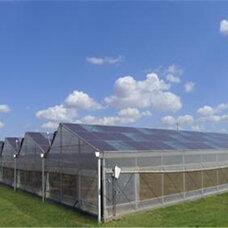 休?#20449;?#19994;大棚,玻璃温室建设,玻璃温室骨架