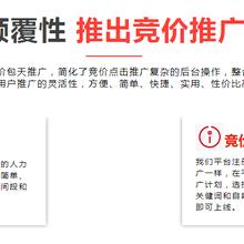 霸王推软件实现关键词全网霸屏效果