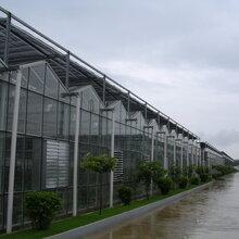 温室大棚建设温室大棚造价山东豪达瑞科智能连栋玻璃温室
