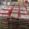 广西医用胶酒盒等各种需上胶机厂家现货销售