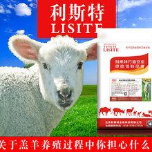 羔羊预混料哪个好羊吃什么饲料好。北京利斯特羊预混料