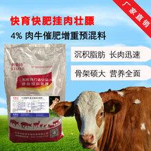 河南肉牛饲料哪家好河南哪里可以买到预混料