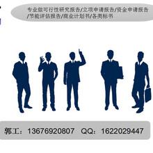 鸡东县写项目申请报告-做立项申请报告的公司图片