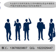 凤城写可行性报告-写项目立项报告正规公司图片