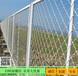 深圳绿化中心隔离网不锈钢美格网门窗防盗美格网定制