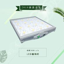 跨境货源新品战舰LED植物生长灯室内大棚蔬菜瓜果育苗种植日照灯图片