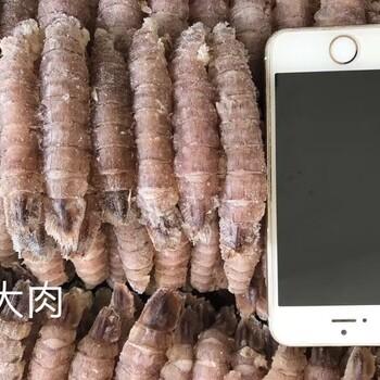 郑州虾爬子肉批发,郑州爬虾肉货源