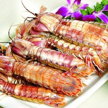 大连虾爬子肉批发,冷冻虾姑肉,厂家批发
