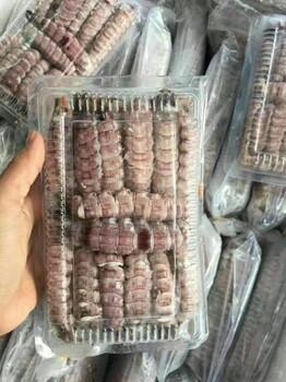 批发熟冻虾爬肉,速冻皮皮虾肉,优质虾姑肉