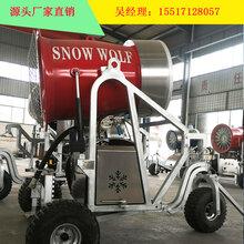 国产滑雪场造雪机厂家雪雕雪乡、村工程用人工造雪机多少钱图片