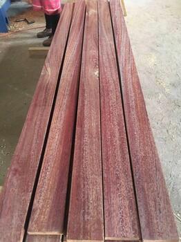 红铁木价格