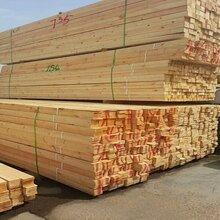 北美铁杉烘干材铁杉任意规格定尺加工上海供应商