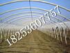 巢湖钢架大棚建设,晋中温室设备建造__青州绿丰温室