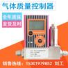 WT/G/M/85SLM/H2/R1气体质量流量计