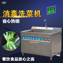 小型不锈钢洗菜机自动气泡消毒果蔬清洗机图片