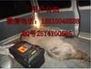 海南高压捕猎器海南北京华创机电野猪机海南捕猎器批发哪家好