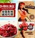 供应休闲零食水果干制品蔓越莓干