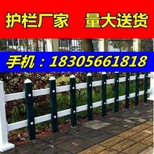 梅州pvc草坪护栏-白色栅栏,木纹色,墨绿护栏图片