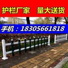 岳西店前镇pvc花池护栏、50公分草坪护栏图片