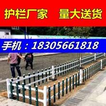 量大送货/衢州市开化县pvc绿化护栏图片