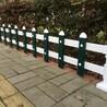 永州市零陵区pvc花坛围栏-3000米急需
