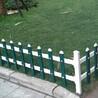 随州市曾都区pvc草坪护栏样式规格图片