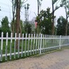 台州市市政绿化围栏4620、3656