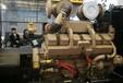 海鹽CAT發電機回收(海鹽發電機回收交易市場)