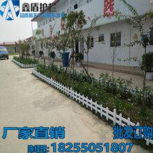 姜堰涟水绿化带护栏供应厂家批发草坪护栏订做图片