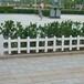 台湾台中北草坪护栏图片