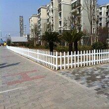 福建龙岩漳平pvc花园围栏图片