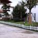 台湾台中东幼儿园塑钢护栏天津宝坻草坪护栏定做