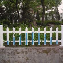 广东肇庆鼎湖pvc围栏塑钢多少钱图片