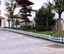 漳平pvc学校护栏焦作河南pvc护栏图片