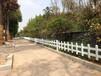 台湾台中东塑钢道路隔离栏上海虹口草坪护栏定做