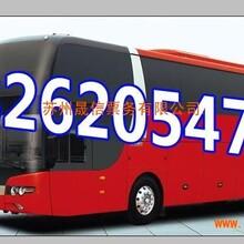 平湖到临沭直达客车票价澳门永利赌场182-6205-4700汽车时刻表图片