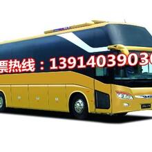 扬州到温州直达卧铺大巴车欢迎乘坐图片