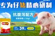 乳猪奶粉品牌小猪吃的奶粉防腹泻