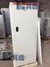 低温-40℃BL-DW268FL防爆立式冰柜