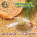 嘉興綺夫貿易有限公司現貨供應大豆卵磷脂食品級磷脂酰膽堿PC50%顆粒