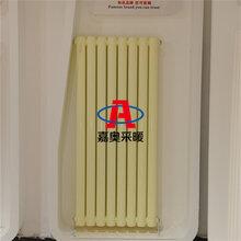低碳鋼制柱型暖氣片AGZ209低碳鋼二柱散熱器廠家