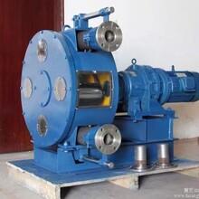 广东水泥挤压泵供应图片