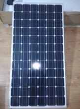 供应100~350Wp单晶硅太阳能电池板单晶硅电池板图片