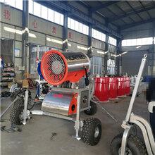 高温造雪机滑雪场小型造雪机参数造雪机报价图片